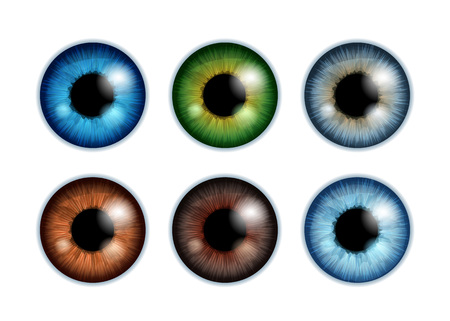 Human eyeballs iris pupils set isolated on white background - blue gray brown green colors. Colorful eyes realistic