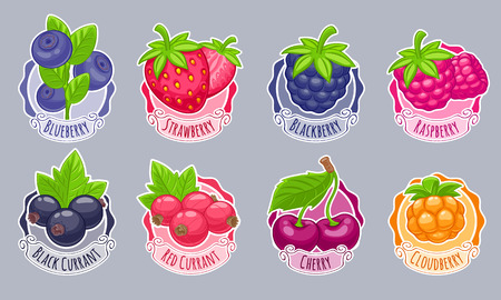 Assorted berries stickers set vector illustration. Sweet juicy strawberry cherry blueberry raspberry black and red currant bilberry cloudberry blackberry isolated on white background.