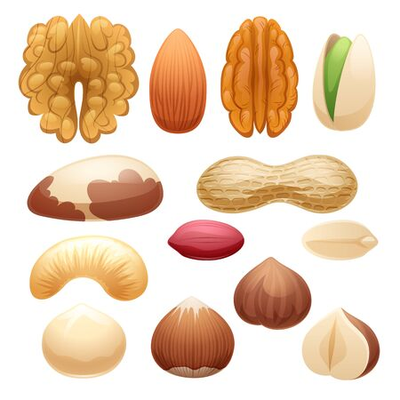 Nuts set illustration.