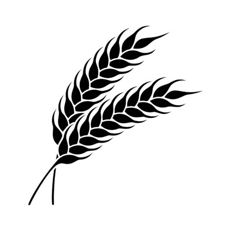 Wheat or rye ears icon. Farm or bakery symbol.