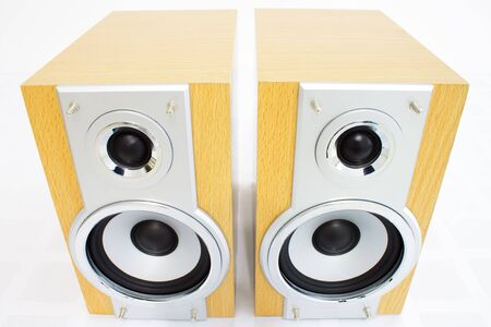 two party system: A pair of hi-fi speakers