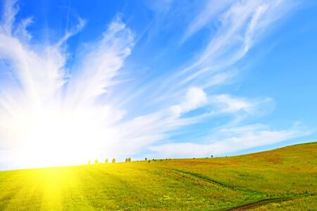 Field and sky Stock Photo - 6209652