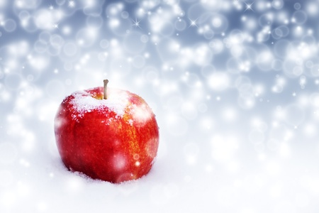 frozen fruit: Big red apple in the snow Stock Photo
