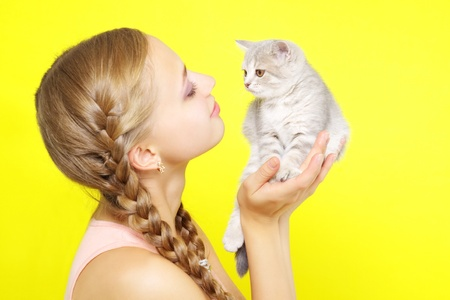beautiful girl with Scottish kitten on yellow background photo