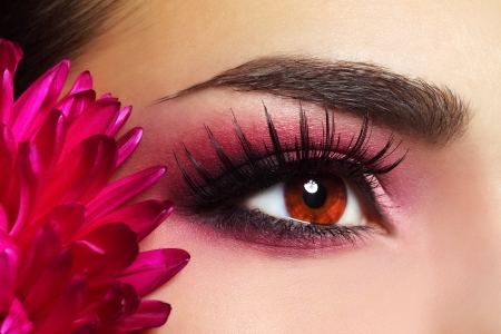 Beautiful Eye Makeup with Aster Flower photo
