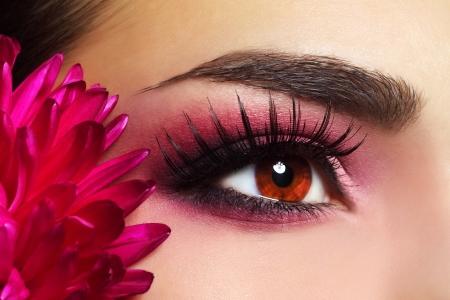 maquillaje de ojos: Maquillaje de Ojos hermosa con la flor del aster