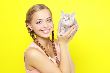 gray haired: beautiful girl with Scottish kitten on yellow background Stock Photo