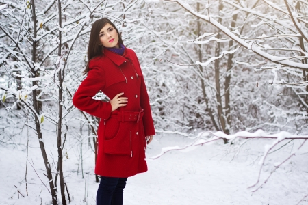 Beautiful Elegant Woman In Red Coat Winter Nature Stock Photo ...