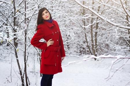 Schöne elegante Frau im roten Mantel Winter der Natur Standard-Bild - 16237421