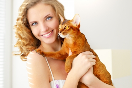 abyssinian cat: girl with Abyssinian cat on light background