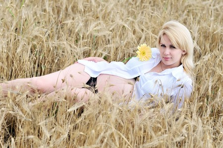 pregnant beauty woman relaxing in wheat field with  gerbera photo