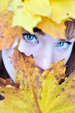 autumn blue eyes of girl between yellow leaves photo