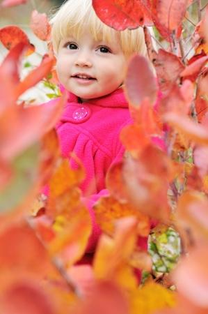 peekaboo: Peekaboo! I see you! - baby in bushes