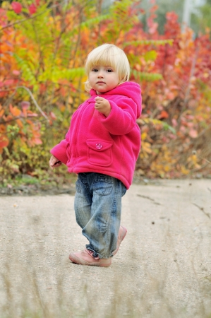 toddler girl walking along bright bushes photo