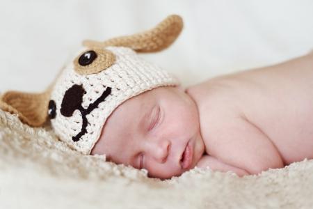 funny newborn wearing dog hat Stock Photo - 18531000