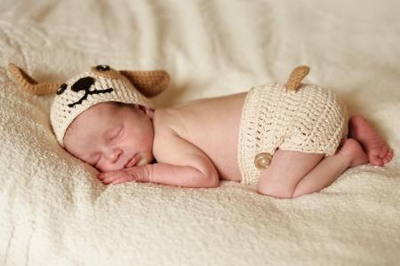 sleeping funny newborn wearing dog costume Stock Photo - 18530998