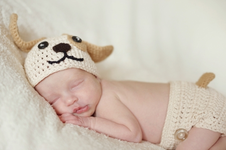 sweet newborn wearing dog costume photo
