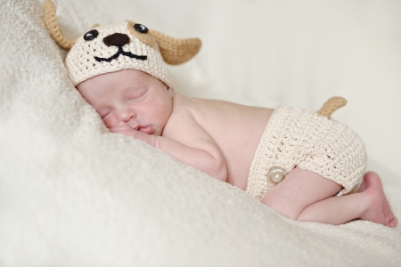 funny little newborn wearing dog costume photo