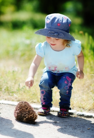toddler girl looking at the hedgehog photo