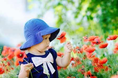 toddler  girl with red poppies photo