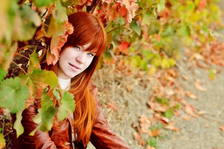 redhead girl in the fall time photo