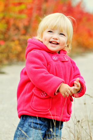 cute toddler girl in fall park photo