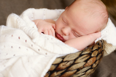the little sleeping sweet newborn photo