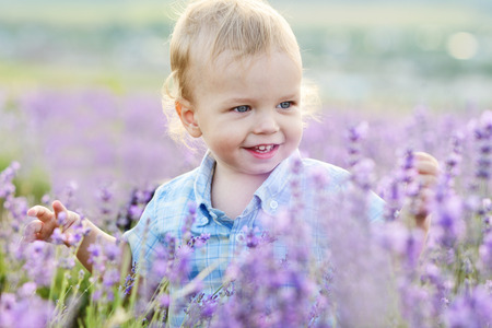 baby boy in the lavender summer field photo
