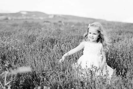 lavanda: sweet toddler girl walking in lavender field Stock Photo