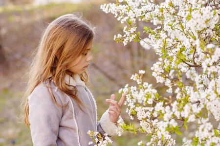 Adorable young girl in blooming cherry tree garden on beautiful spring day.