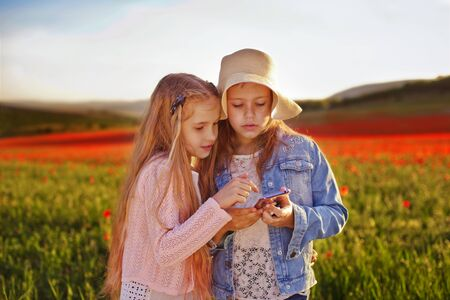 friends with smartphone on the field of poppies Archivio Fotografico