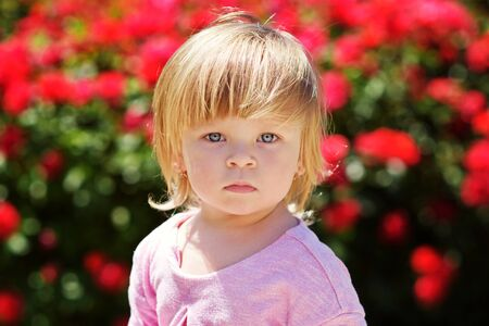 portrait of the sweet baby girl near the roses bushes Archivio Fotografico