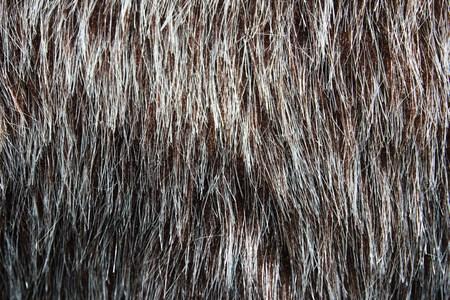 Fake Fur Background - Photography Stock Photo