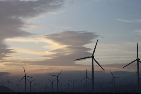 A field of windmills spin in front of a colorful sky. Stok Fotoğraf