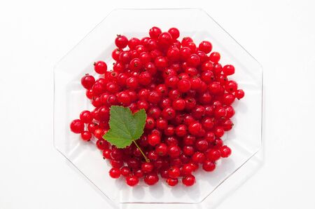 Dish with currants and leaf on white background