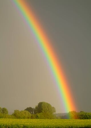 Rainbow portrait Banco de Imagens