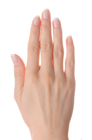 Woman palm on white background isolated photo