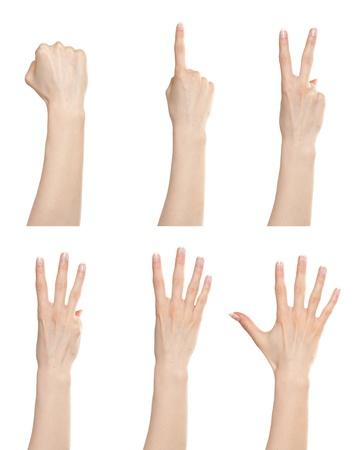pu�os: Gesto con la mano mujer establece contando n�meros de cero a cinco Foto de archivo