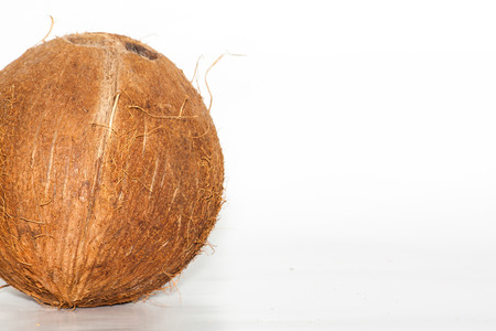 Big coconut on white  in left side photo