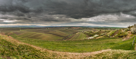 velke: View to the large vineyards in Moravia with dramatic clouds Stock Photo