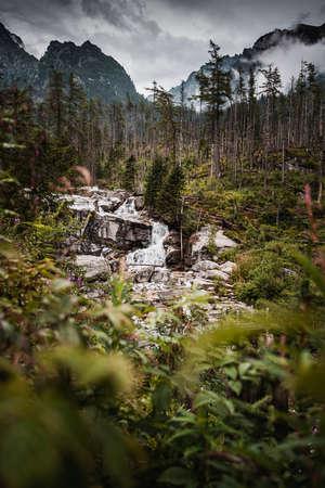 The Cold Creek flows through a huge terrain break and creates beautiful cascades and cataracts. Standard-Bild