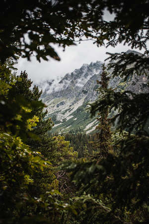 High Tatras nature during rainy day with low visibility. Standard-Bild - 167588195