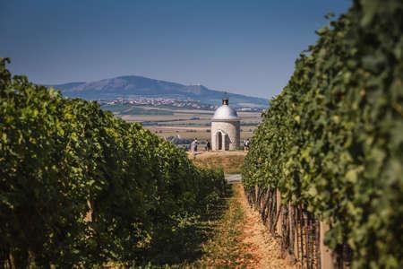 Very popular place called Hradistek in vineyards of South Moravia