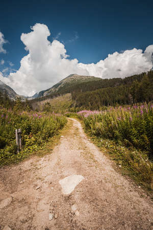 Pathway for trekking of High Tatras during summer season