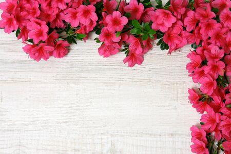 azaleas: Decoration with azaleas Stock Photo