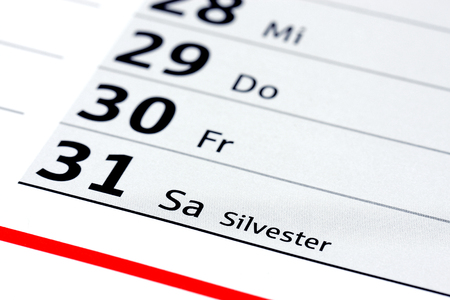 new year s day: Silvester