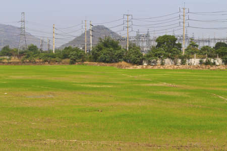 Farming areas and high-voltage towers  photo