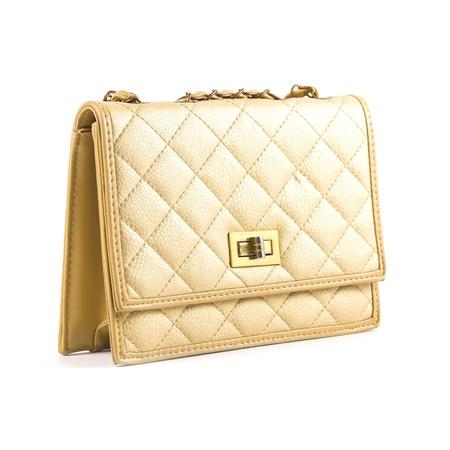 Luxury women bag isolated over white