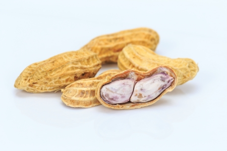goober peas: Boiled peanut on white background