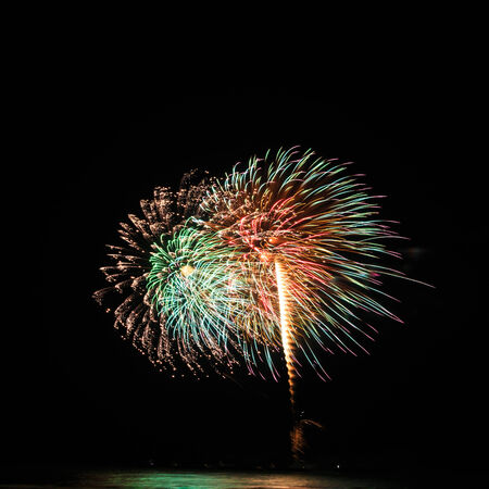 A delicate burst of fireworks in the night sky photo